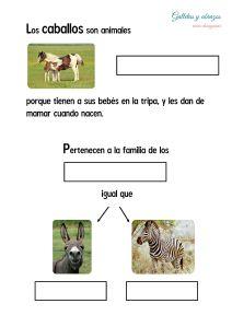 Información_1