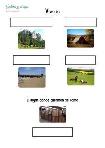 Información_2