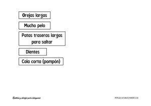 Características 1 GyA_2