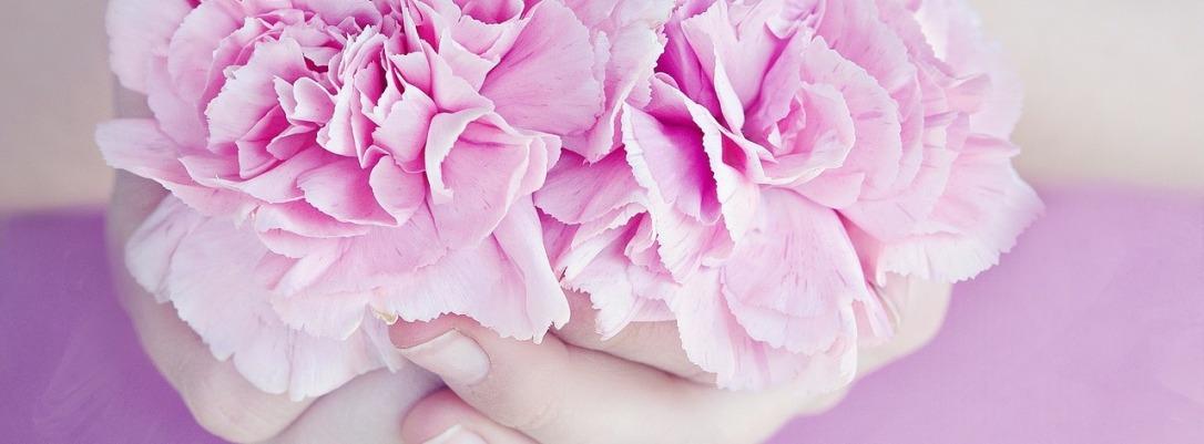 flowers-1316027_1280