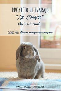 Proyecto Conejos